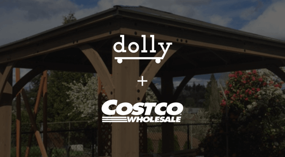 How Dolly Helped Set Up the Perfect Patio